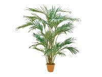 EUROPALMS Kanarische Dattelpalme, Kunstpflanze, 240cm