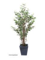 EUROPALMS Ficus-Benjamini deluxe, Kunstpflanze, 240cm