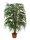 EUROPALMS Weidenbaum Multiblatt, Kunstpflanze, 215cm