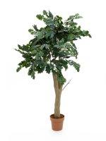 EUROPALMS Eichenbaum, Kunstpflanze, 160cm