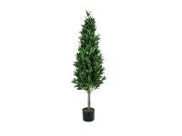 EUROPALMS Lorbeerkegelbaum, hochstamm, Kunstpflanze, 180cm