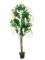 EUROPALMS Goldregenbaum, Kunstpflanze, weiß, 150cm