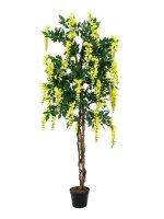 EUROPALMS Goldregenbaum, Kunstpflanze, gelb, 180cm