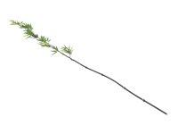 EUROPALMS Bambusstab mit Blättern, künstlich,...