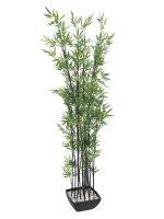 EUROPALMS Zierbambus in Dekoschale, künstlich, 180cm