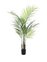 EUROPALMS Großblatt-Areca, Kunstpflanze, 125cm