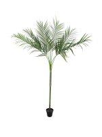EUROPALMS Areca deluxe, Kunstpflanze, 180cm