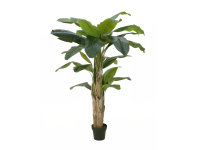 EUROPALMS Bananenbaum, Kunstpflanze, 170cm