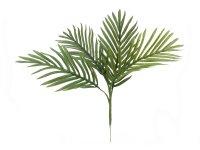 EUROPALMS Areca Palmen-Setzling, Kunstpflanze, 60cm