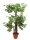 EUROPALMS Fishtail-Palmbaum, Kunstpflanze, 380cm