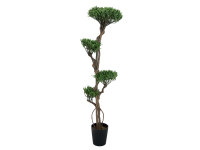 EUROPALMS Bonsai-Palmenbaum, Multistamm, Kunstpflanze, 170cm