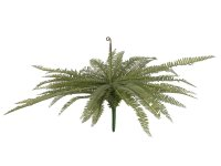 EUROPALMS Königsfarn,Kunstpflanze,  grün, 70cm