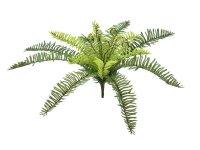 EUROPALMS Waldfarn, Kunstpflanze, 30cm