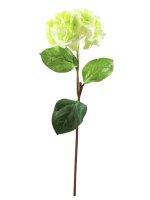 EUROPALMS Hortensienzweig, künstlich, grün, 76cm