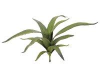 EUROPALMS Aloe (EVA), künstlich, grün, 66cm