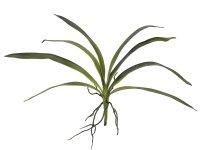 EUROPALMS Orchideenblatt (EVA), künstlich,...