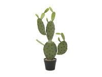 EUROPALMS Blätterkaktus, Kunstpflanze, 75cm