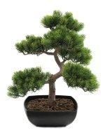 EUROPALMS Bonsai-Pinie, Kunstpflanze, 50cm