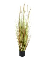 EUROPALMS Lampenputzergrasbusch, Kunstpflanze, 120cm