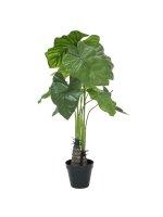 EUROPALMS Caladium, Kunstpflanze, 90cm